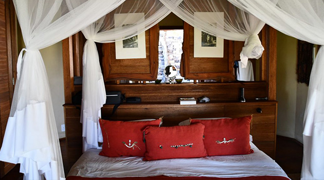 zangarna game lodge, game lodge in south africa, top 10 game reserves in south africa, game lodge, south africa, africa, safari, adventure, african style, birding safari, african lodge, savannah, ideal relaxation, chalets, peaceful atmosphere, private wooden decked terrace, exterior shower, sofa bed, mini bar, interior design, Vaalwater, Lephalele, guided tours, land cruiser, natural habitat, Big 5 game drive, white lions, excursion, horse riding, Golf, Lephalale Golf Club, Shopping, Waterberg, Birdlife South Africa, Avitourism, Wild Seringa , African Black Duck, Black Crake, Green-back Heron, African Crake, Red Chested Flufftail, Black headed Oriole, White-crested Helmet-Shrike, Black Cuckoo-Shrike, woodpecker, Grey headed Kingfisher, Cuckoos, Giraffe, Impala, Blue Wildebeest, Zebra, Red Hartebeest, Eland